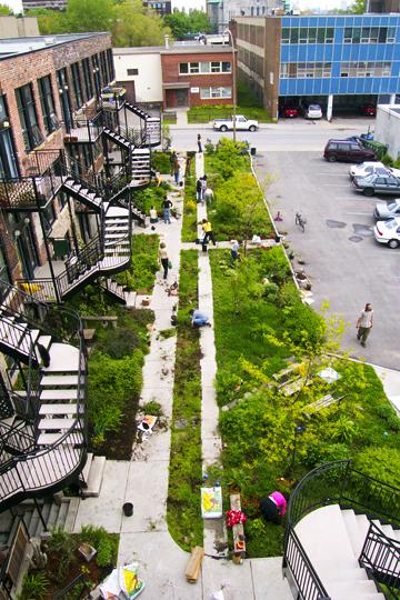 jardin1.jpg